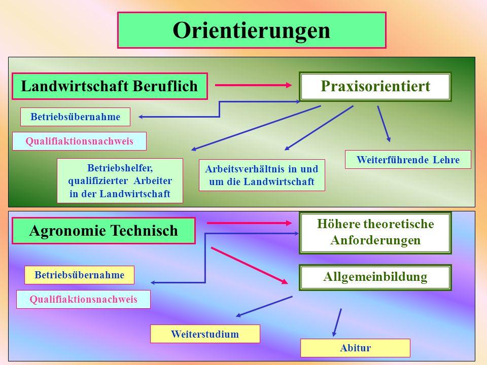 Orientierungen Landwirtschaft Beruflich Praxisorientiert Betriebsübernahme Weiterführende Lehre Arbeitsverhältnis in und um die Landwirtschaft Betrieb