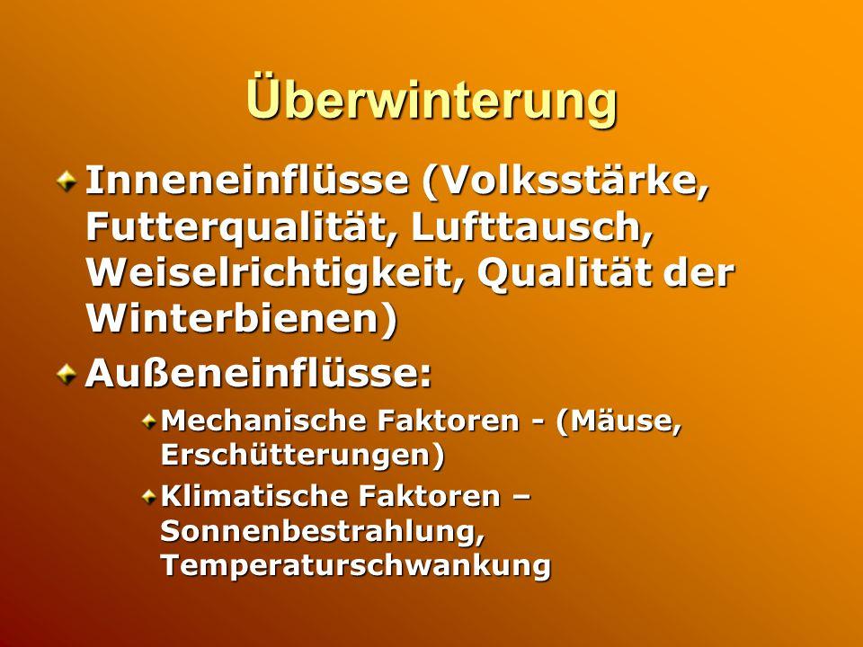 Überwinterung Inneneinflüsse (Volksstärke, Futterqualität, Lufttausch, Weiselrichtigkeit, Qualität der Winterbienen) Außeneinflüsse: Mechanische Fakto
