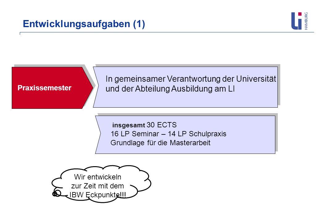 Entwicklungsaufgaben (1) Praxissemester In gemeinsamer Verantwortung der Universität und der Abteilung Ausbildung am LI insgesamt 30 ECTS 16 LP Semina