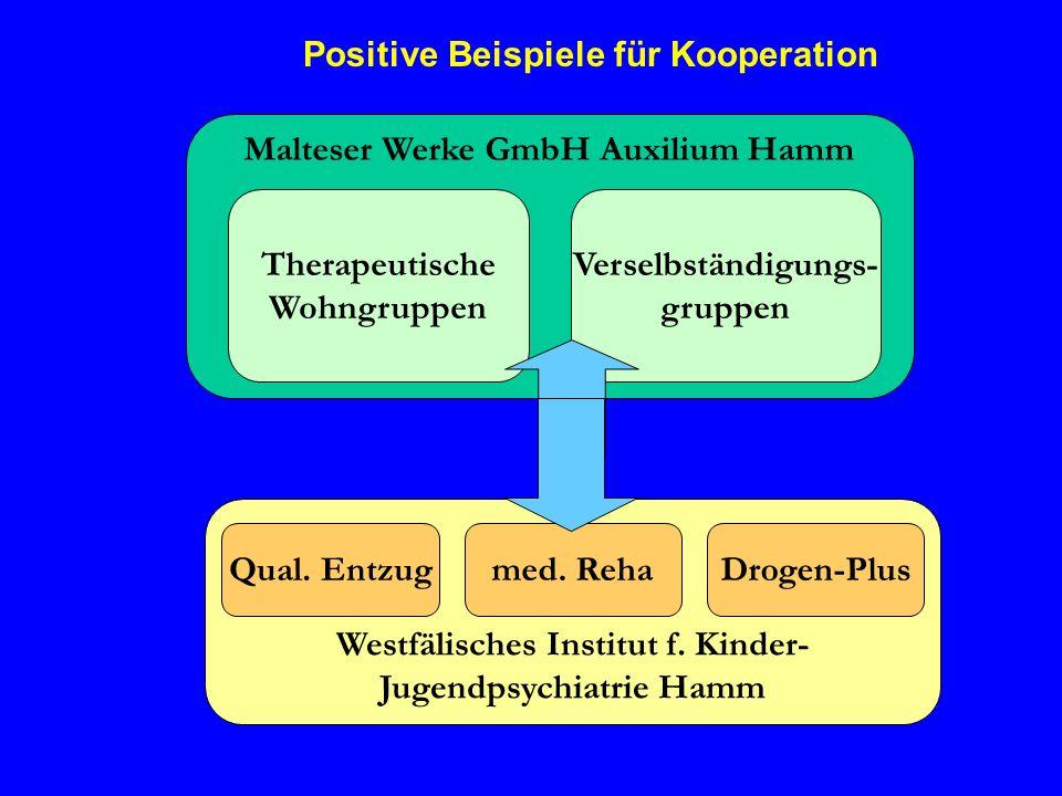 Positive Beispiele für Kooperation Malteser Werke GmbH Auxilium Hamm Therapeutische Wohngruppen Verselbständigungs- gruppen Westfälisches Institut f.