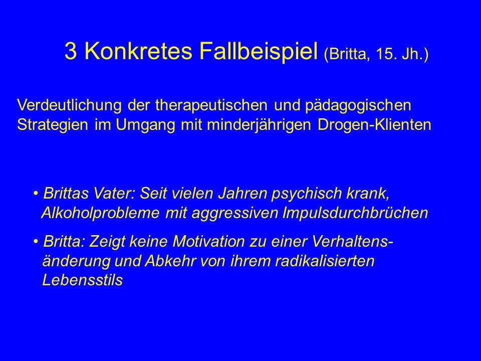 3 Konkretes Fallbeispiel (Britta, 15.