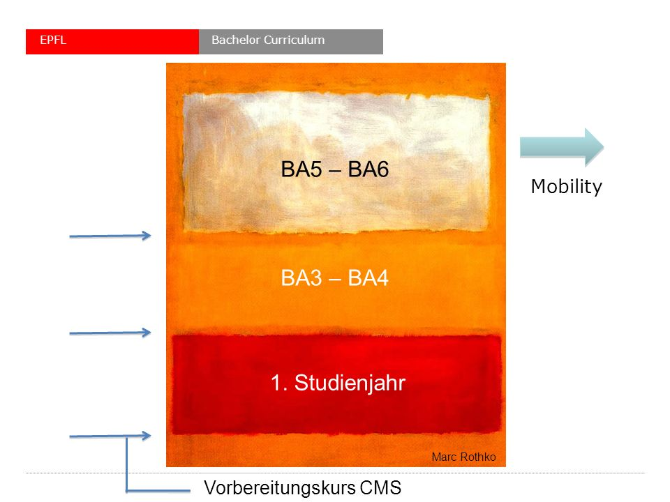 1. Studienjahr BA3 – BA4 BA5 – BA6 Mobility Marc Rothko Vorbereitungskurs CMS Bachelor CurriculumEPFL