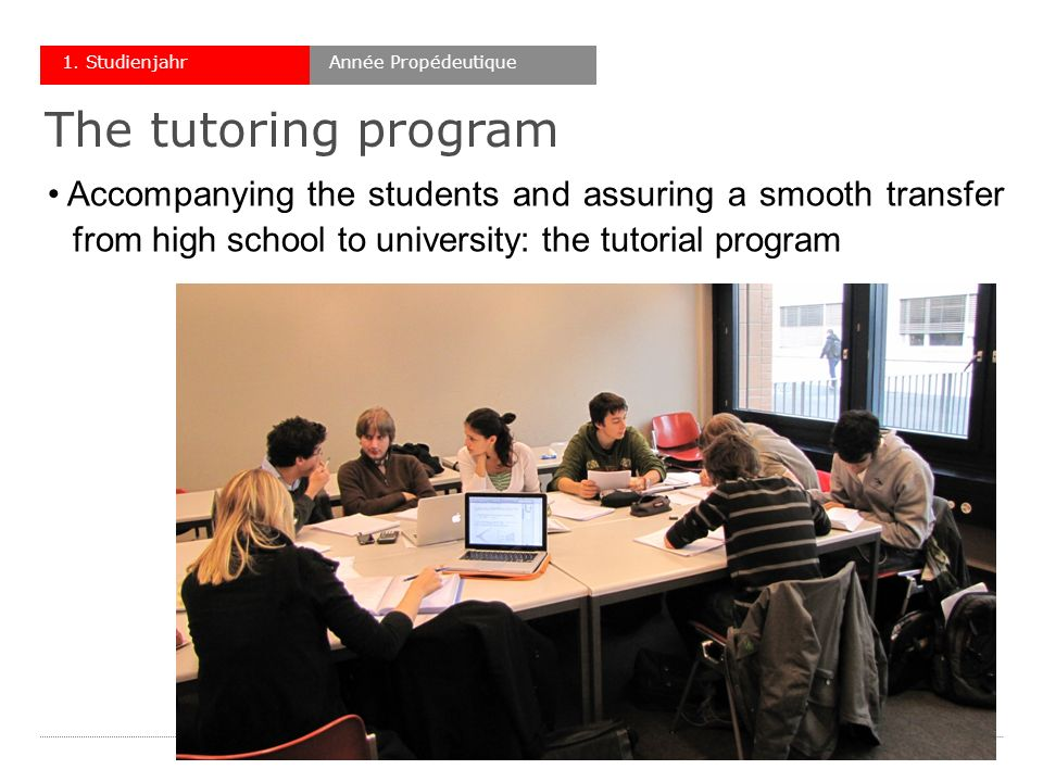 Accompanying the students and assuring a smooth transfer wfrom high school to university: the tutorial program Année Propédeutique1.