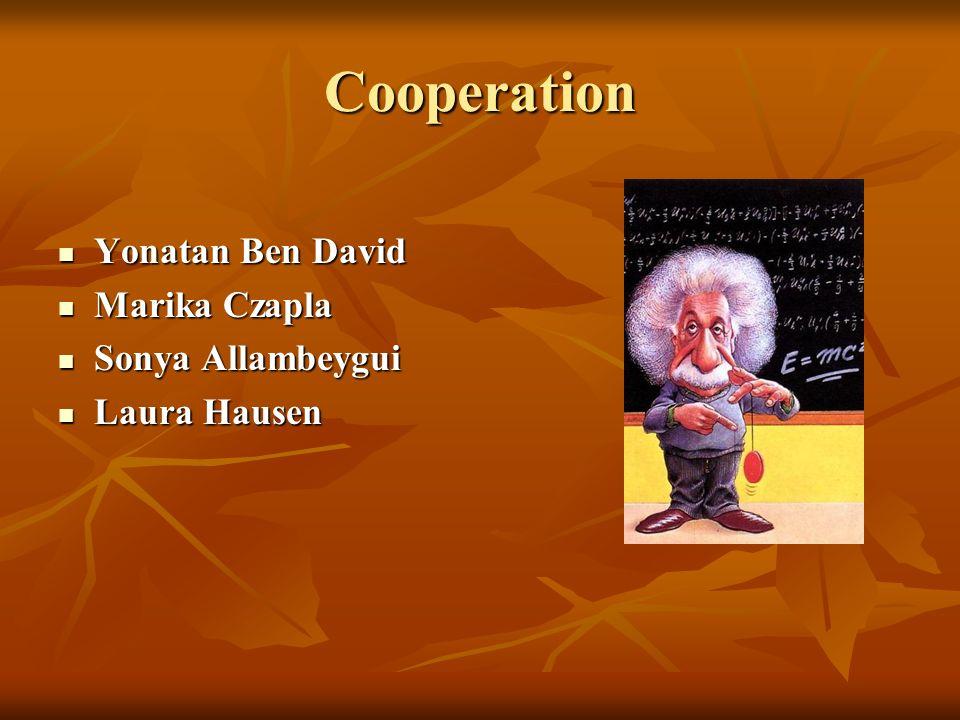 Cooperation Yonatan Ben David Yonatan Ben David Marika Czapla Marika Czapla Sonya Allambeygui Sonya Allambeygui Laura Hausen Laura Hausen