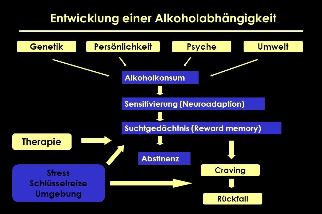 GenetikPersönlichkeitPsycheUmwelt Alkoholkonsum Sensitivierung (Neuroadaption) Suchtgedächtnis (Reward memory) Abstinenz Therapie Stress Schlüsselreiz