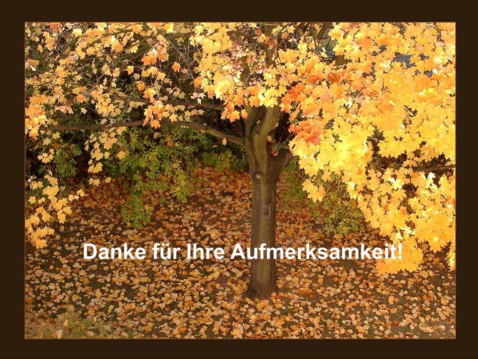 MDK Sachsen-Anhalt 30 Vielen Dank für Ihre Aufmerksamkeit Danke für Ihre Aufmerksamkeit!