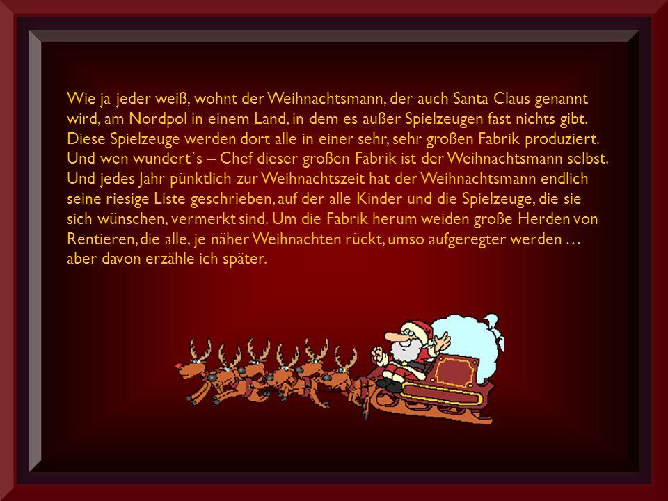 Wie ja jeder weiß, wohnt der Weihnachtsmann, der auch Santa Claus genannt wird, am Nordpol in einem Land, in dem es außer Spielzeugen fast nichts gibt.