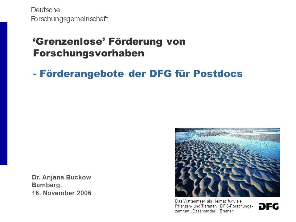 Grenzenlose Förderung von Forschungsvorhaben - Förderangebote der DFG für Postdocs Dr. Anjana Buckow Bamberg, 16. November 2006 Das Wattenmeer als Hei