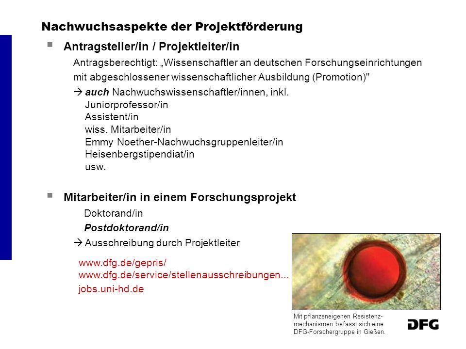 Nachwuchsaspekte der Projektförderung Antragsteller/in / Projektleiter/in Antragsberechtigt: Wissenschaftler an deutschen Forschungseinrichtungen mit
