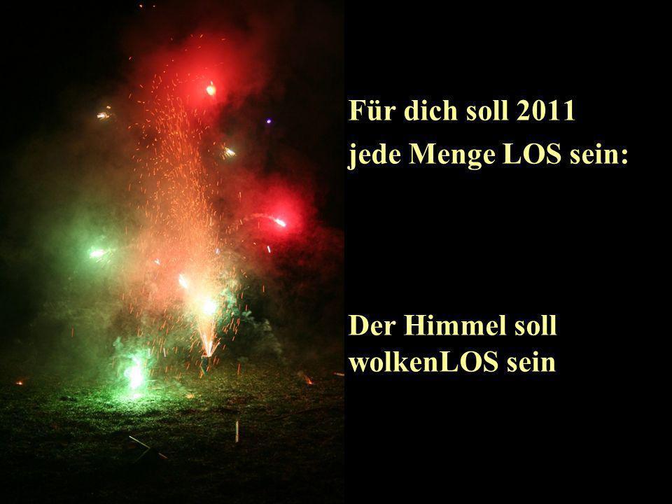 Titel Fotos © R.Troppmann 2010 Für dich soll 2011 jede Menge LOS sein....