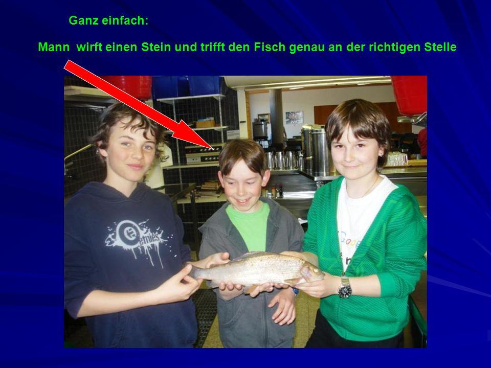 Ganz einfach: wirft einen Stein und trifft den Fisch genau an der richtigen StelleMann