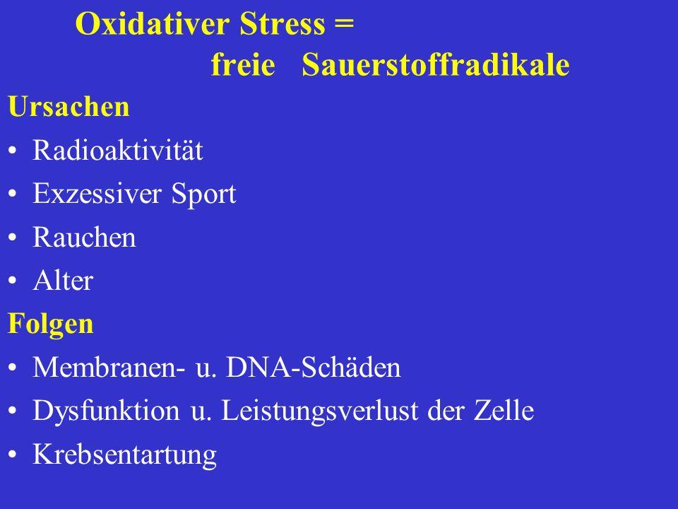 Praevention / Risikoprofile (=Komfort) Labor:Anti-Aging-Profil Osteoporose Hormonstatus (Mann) Hormonstatus Menopause Oxidativer Streß Immunolog. Stat