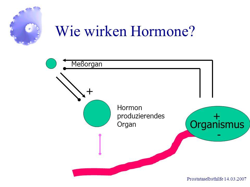 Prostataselbsthilfe 14.03.2007 Wie wirken Hormone?