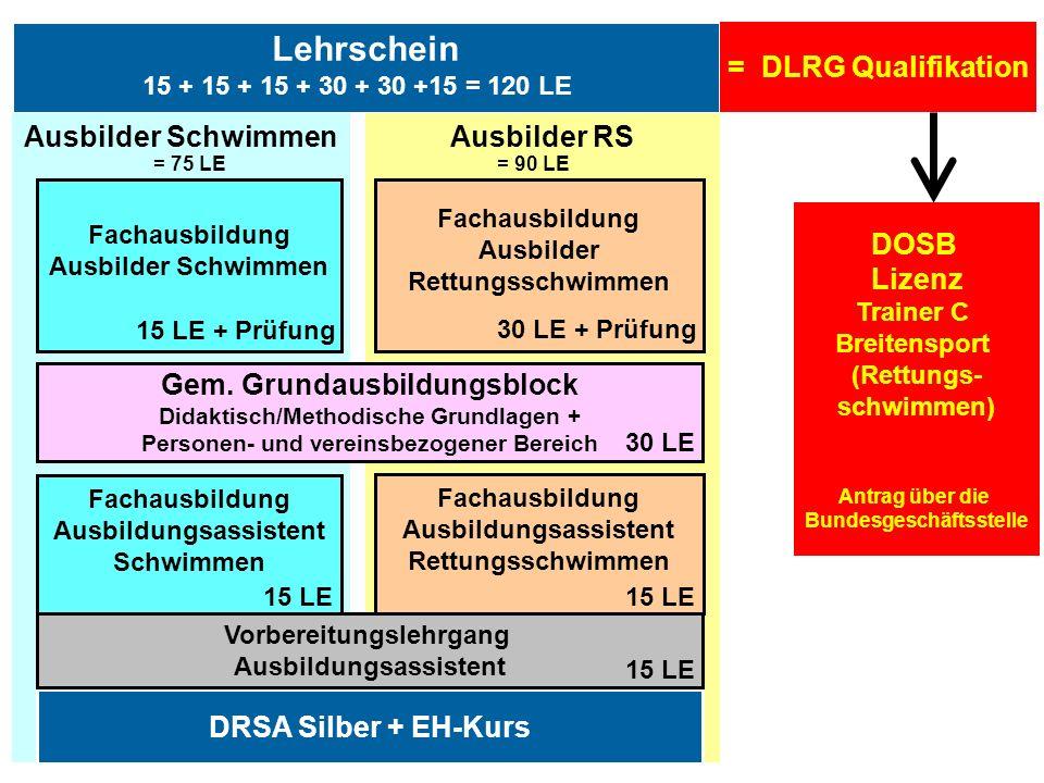 Info-Tour Ausbildung 2010 / DLRG LV Baden e.V. Lehrschein Ausbilder RSAusbilder Schwimmen DRSA Silber + EH-Kurs Gem. Grundausbildungsblock Didaktisch/