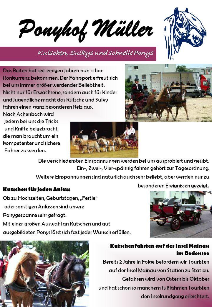 Seit 1995 gibt es auf dem Ponyhof jedes Jahr eine Quadrille, bestehend aus 8 Reitern mit ihren Shetlandponys.