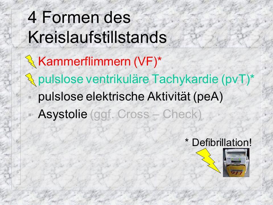 Kammerflimmern (VF)