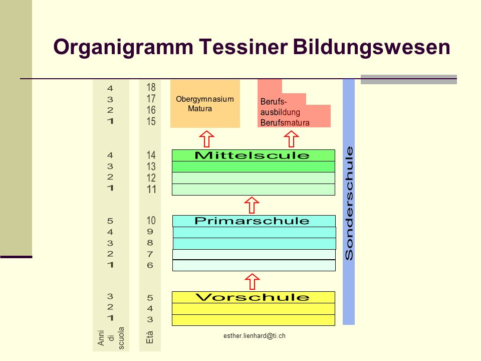esther.lienhard@ti.ch Organigramm Tessiner Bildungswesen