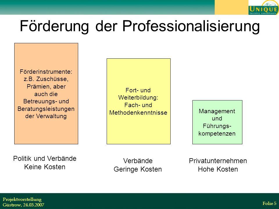 Projektvorstellung Güstrow, 24.03.2007 Folie 5 Förderung der Professionalisierung Förderinstrumente: z.B.