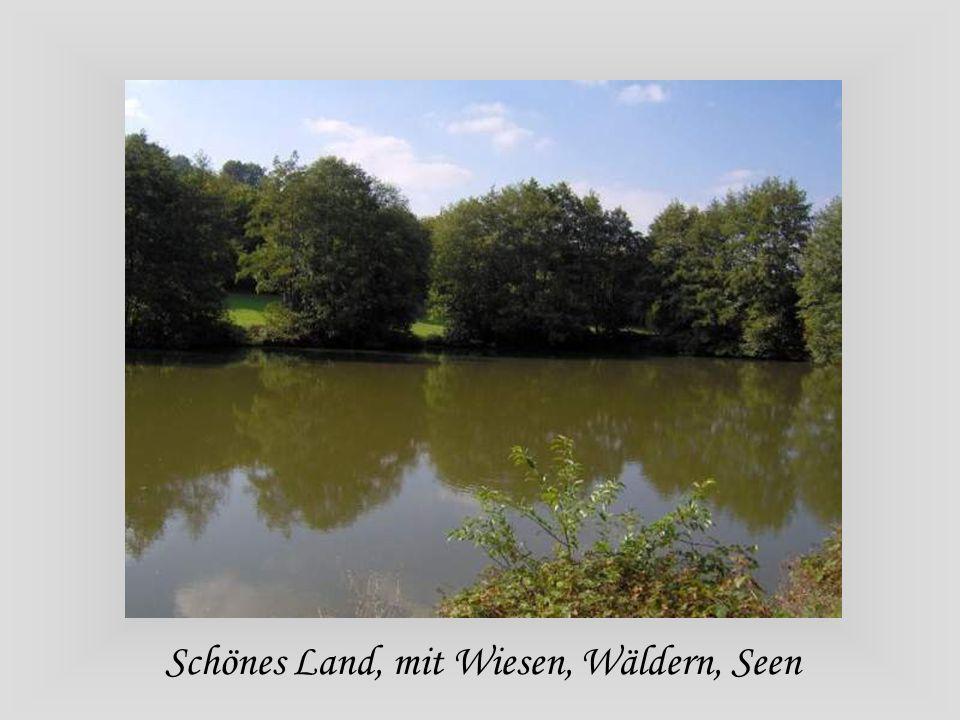 Schönes Land, mit Wiesen, Wäldern, Seen