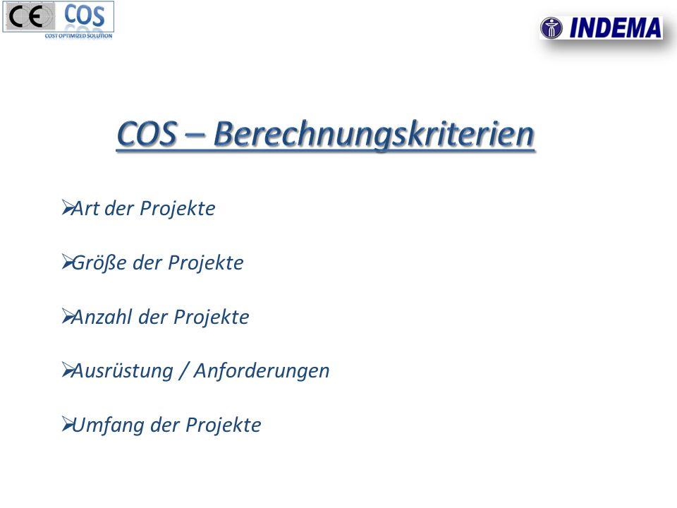 Art der Projekte Größe der Projekte Anzahl der Projekte Ausrüstung / Anforderungen Umfang der Projekte
