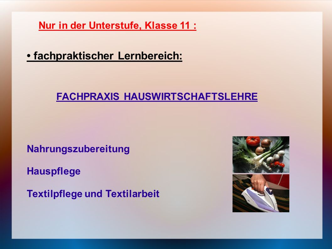 Nur in der Unterstufe, Klasse 11 : fachpraktischer Lernbereich: FACHPRAXIS HAUSWIRTSCHAFTSLEHRE Nahrungszubereitung Hauspflege Textilpflege und Textil