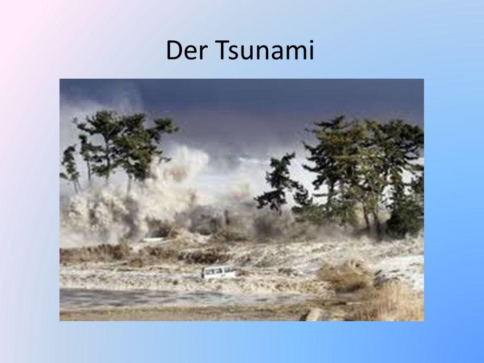 Der Tsunami