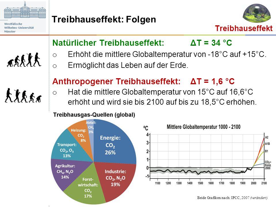 Natürlicher Treibhauseffekt: ΔT = 34 °C o Erhöht die mittlere Globaltemperatur von -18°C auf +15°C. o Ermöglicht das Leben auf der Erde. Anthropogener