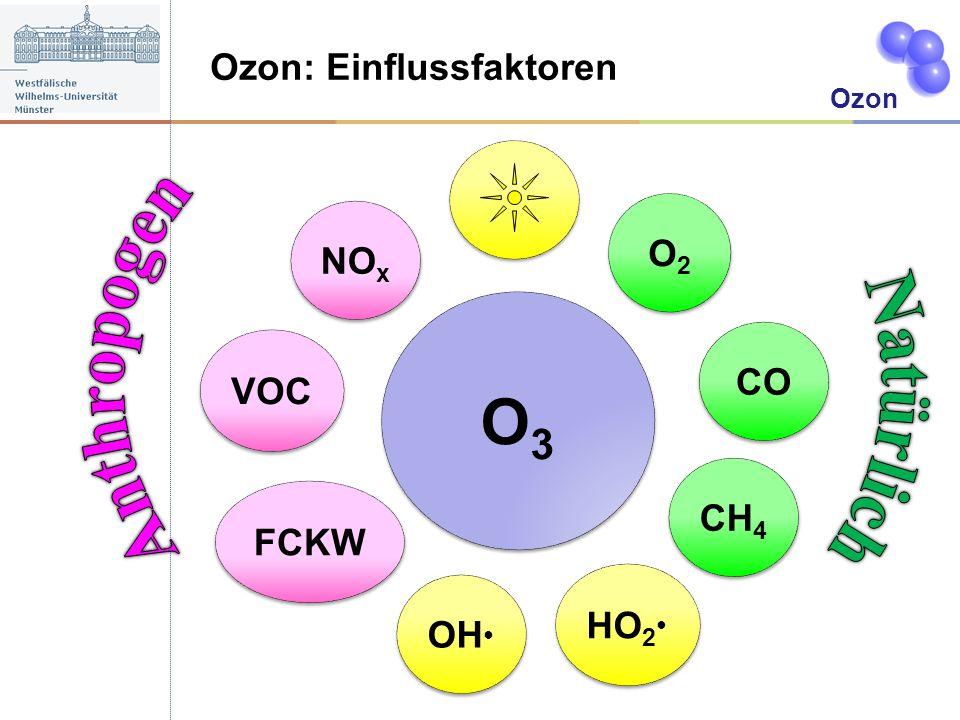 Ozon: Einflussfaktoren Ozon O3O3 O3O3 HO 2 NO x OH VOC O2O2 O2O2 CH 4 CO FCKW