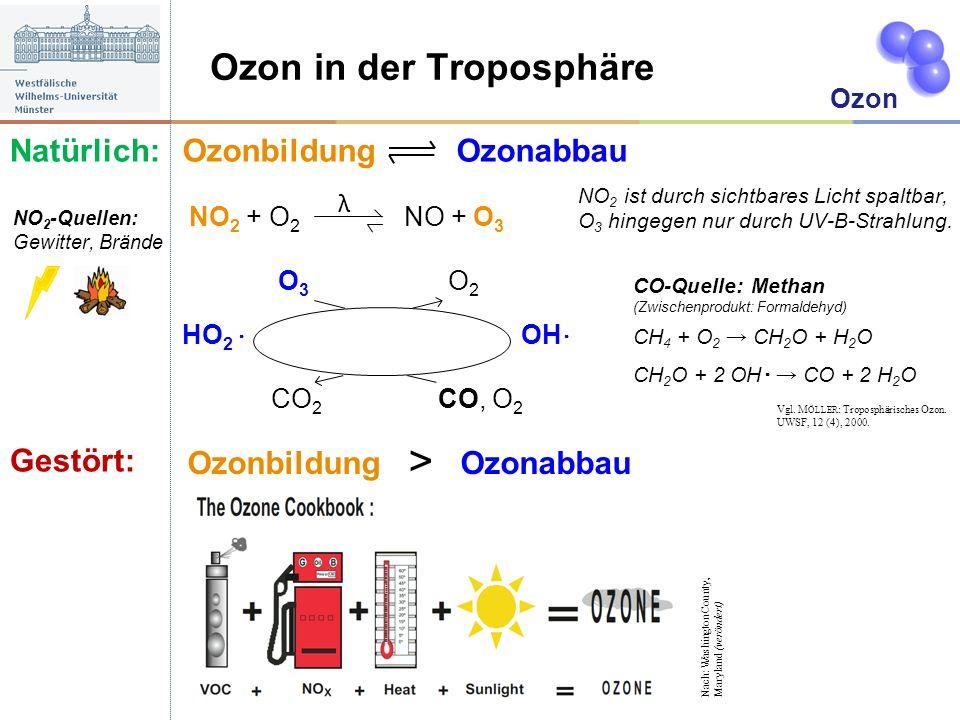 Ozon in der Troposphäre Ozonbildung Ozonabbau NO 2 + O 2 NO + O 3 O 3 O 2 HO 2 OH CO 2 CO, O 2 Ozon NO 2 ist durch sichtbares Licht spaltbar, O 3 hing