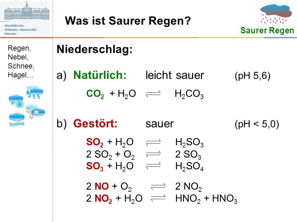 Was ist Saurer Regen? Niederschlag: a)Natürlich:leicht sauer (pH 5,6) CO 2 + H 2 O H 2 CO 3 b)Gestört:sauer (pH < 5,0) SO 2 + H 2 OH 2 SO 3 2 SO 2 + O