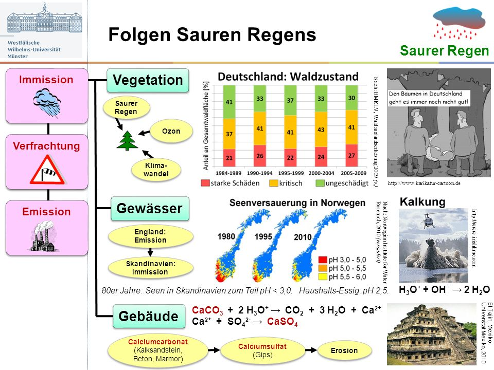 Folgen Sauren Regens Saurer Regen Gewässer Vegetation Gebäude http://www.karikatur-cartoon.de Nach: Norwegian Institute for Water Research, 2010 (verä