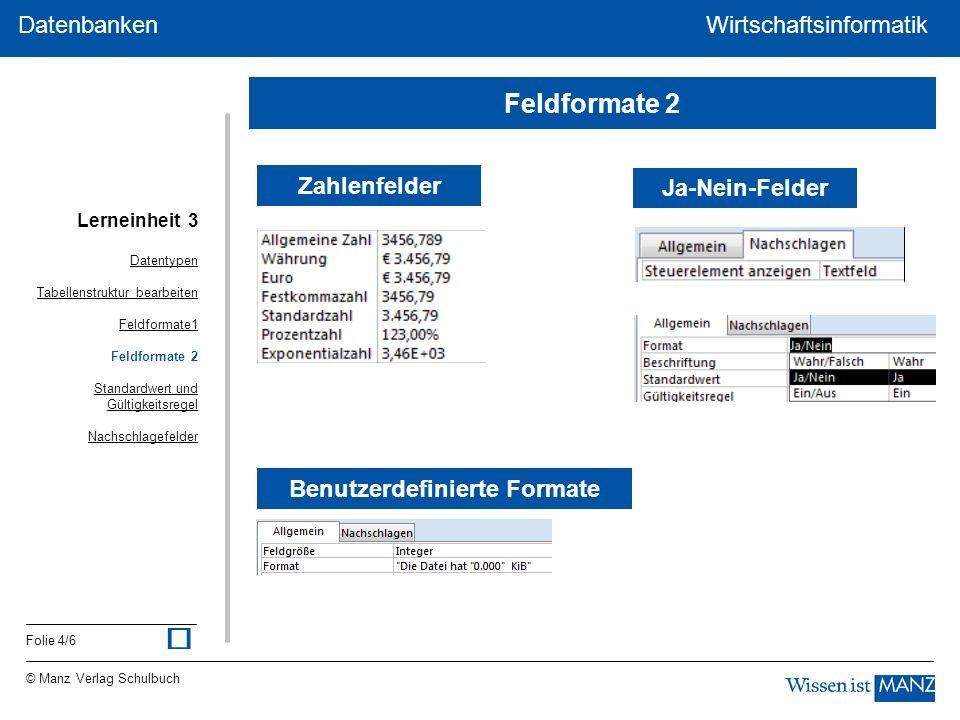 © Manz Verlag Schulbuch Wirtschaftsinformatik Folie 4/6 Datenbanken WirtschaftsinformatikDatenbanken Zahlenfelder Benutzerdefinierte Formate Ja-Nein-F