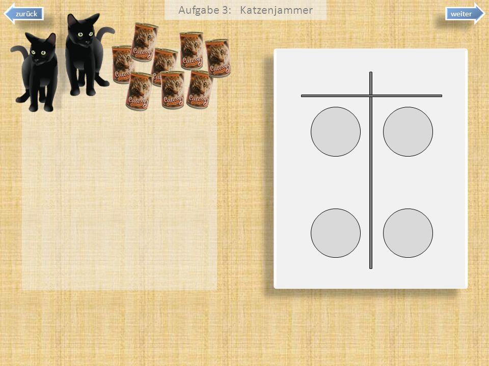 weiter Aufgabe 3: Katzenjammer zurück