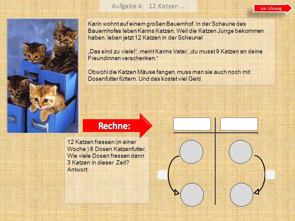 Aufgabe 4: 12 Katzen... Karin wohnt auf einem großen Bauernhof. In der Scheune des Bauernhofes leben Karins Katzen. Weil die Katzen Junge bekommen hab