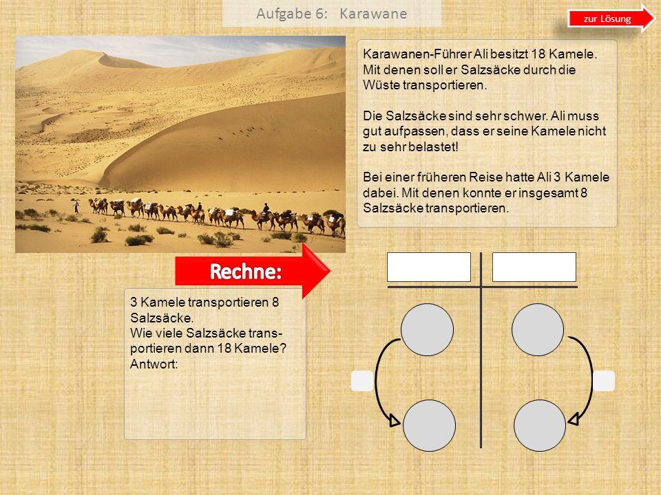 Aufgabe 6: Karawane Karawanen-Führer Ali besitzt 18 Kamele. Mit denen soll er Salzsäcke durch die Wüste transportieren. Die Salzsäcke sind sehr schwer