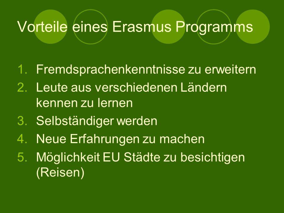Gründe für ein Erasmus – Studium Neue Mentalitäten kennen zu lernen Studenten-Erfahrung in einem fremden Land zu machen Sich beruflich auf die Globali