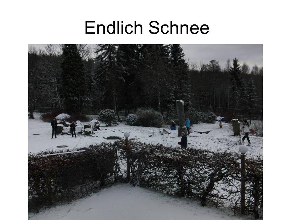 Sch… Schnee