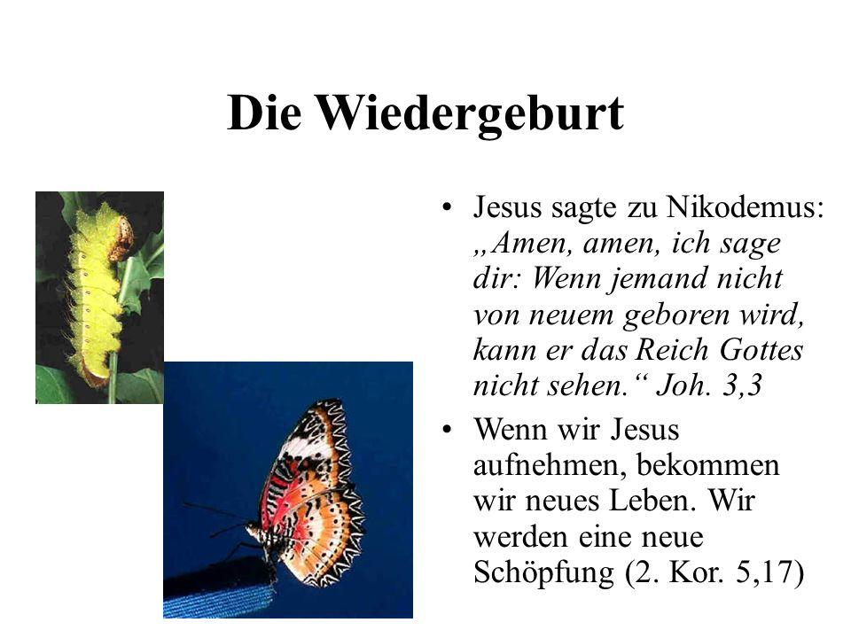 Die Wiedergeburt Jesus sagte zu Nikodemus: Amen, amen, ich sage dir: Wenn jemand nicht von neuem geboren wird, kann er das Reich Gottes nicht sehen. J