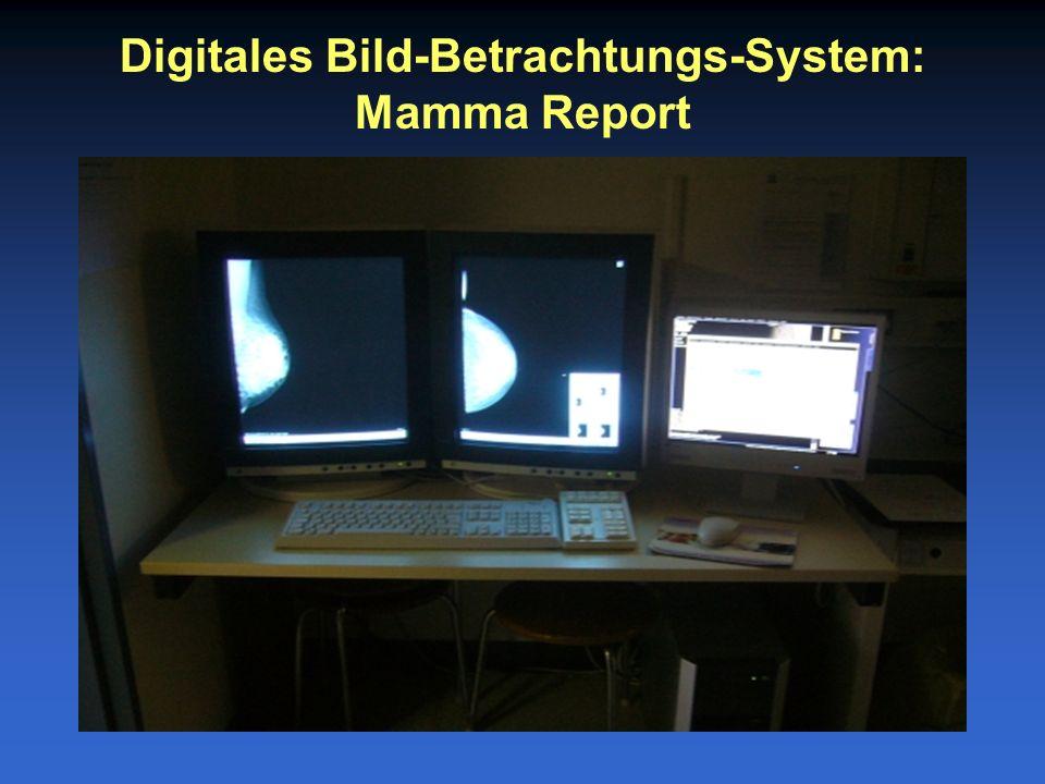 Digitales Bild-Betrachtungs-System: Mamma Report