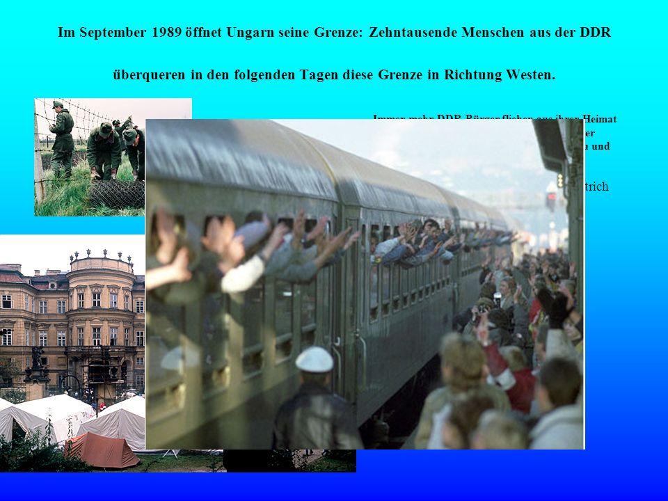 Im September 1989 öffnet Ungarn seine Grenze: Zehntausende Menschen aus der DDR überqueren in den folgenden Tagen diese Grenze in Richtung Westen. Imm