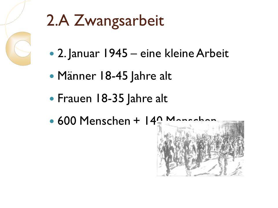 2.A Zwangsarbeit 2. Januar 1945 – eine kleine Arbeit Männer 18-45 Jahre alt Frauen 18-35 Jahre alt 600 Menschen + 140 Menschen