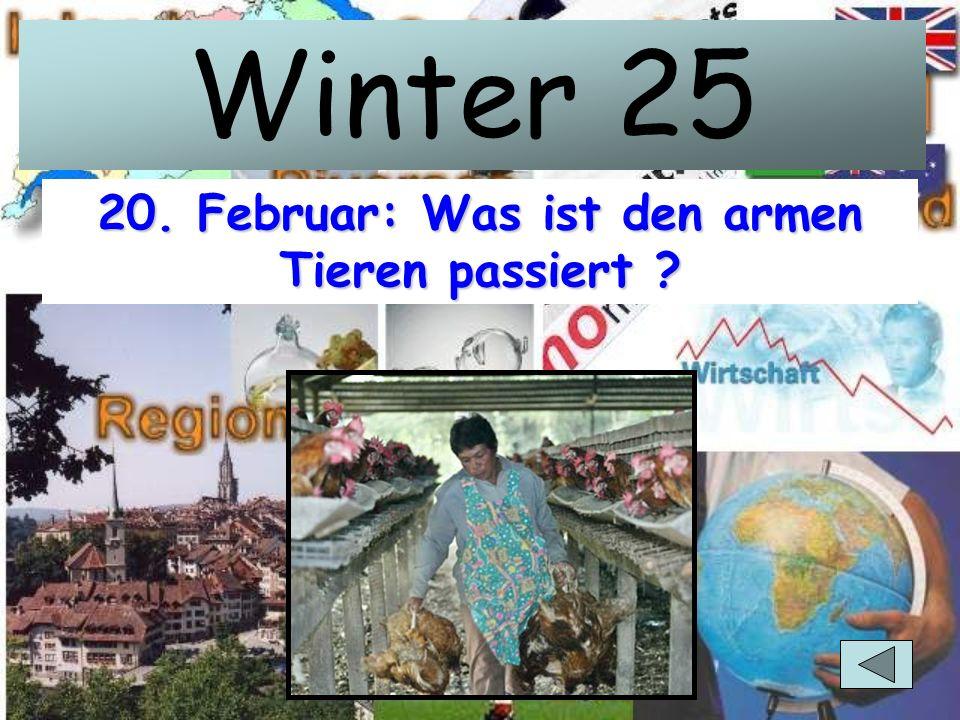 Winter 20 1. Februar: Missgeschick oder Absicht? Wie heissen die beiden?