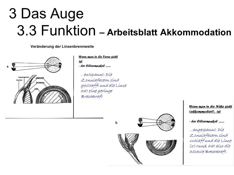 3 Das Auge 3.3 Funktion – Arbeitsblatt Akkommodation..entspannt.