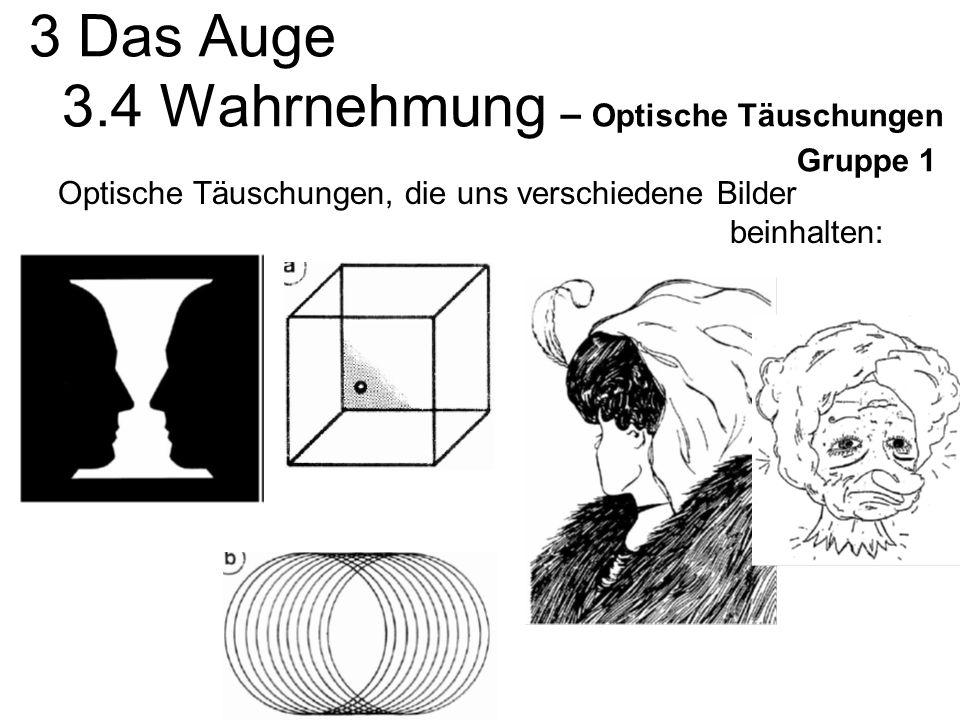 3 Das Auge 3.4 Wahrnehmung – Optische Täuschungen Gruppe 1 Optische Täuschungen, die uns verschiedene Bilder beinhalten: