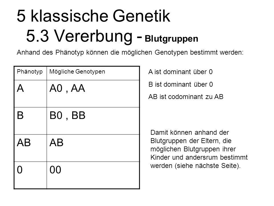 5 klassische Genetik 5.3 Vererbung - Blutgruppen PhänotypMögliche Genotypen AA0, AA BB0, BB AB 000 A ist dominant über 0 B ist dominant über 0 AB ist codominant zu AB Anhand des Phänotyp können die möglichen Genotypen bestimmt werden: Damit können anhand der Blutgruppen der Eltern, die möglichen Blutgruppen ihrer Kinder und andersrum bestimmt werden (siehe nächste Seite).