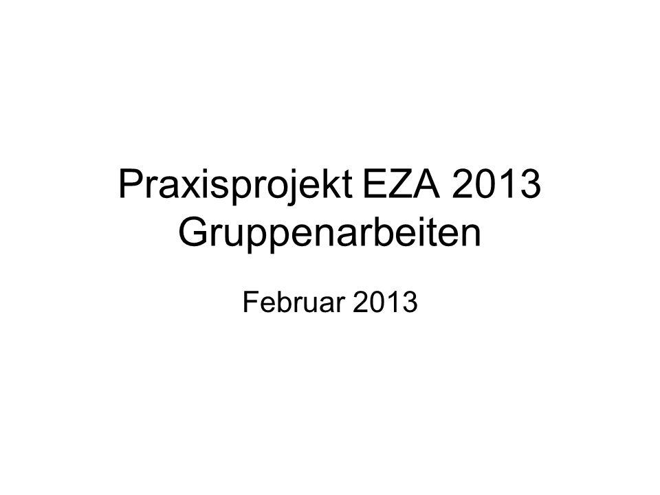 Praxisprojekt EZA 2013 Gruppenarbeiten Februar 2013