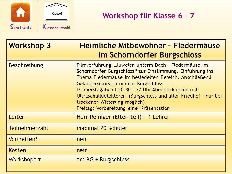 14 Workshop für Klasse 6 – 7 Workshop 3Heimliche Mitbewohner – Fledermäuse im Schorndorfer Burgschloss Beschreibung Filmvorführung Juwelen unterm Dach