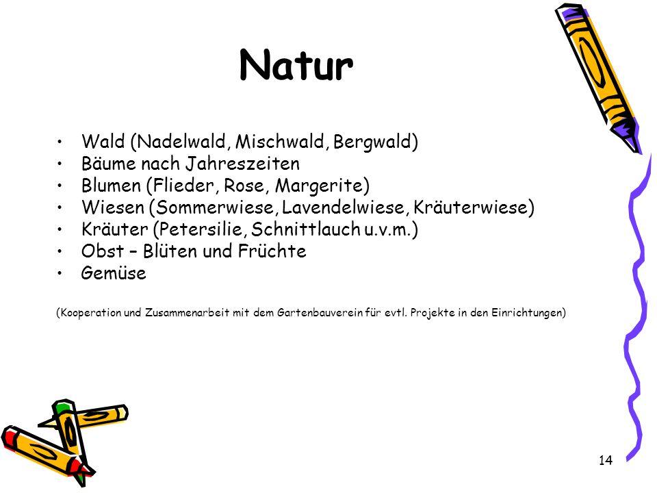 Natur Wald (Nadelwald, Mischwald, Bergwald) Bäume nach Jahreszeiten Blumen (Flieder, Rose, Margerite) Wiesen (Sommerwiese, Lavendelwiese, Kräuterwiese