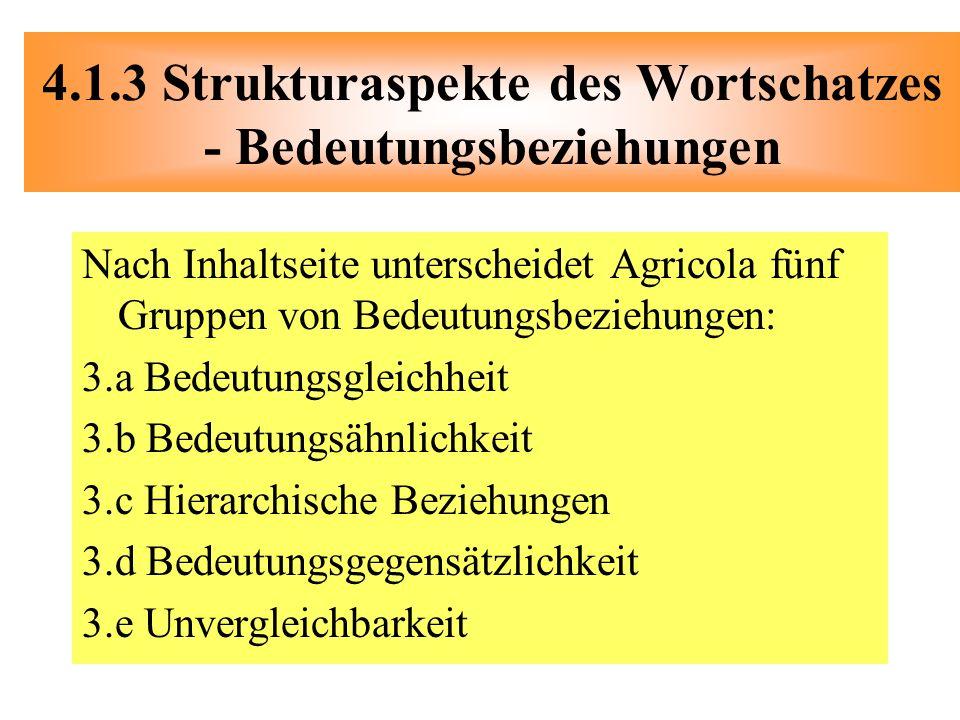 Nach Inhaltseite unterscheidet Agricola fünf Gruppen von Bedeutungsbeziehungen: 3.a Bedeutungsgleichheit 3.b Bedeutungsähnlichkeit 3.c Hierarchische B