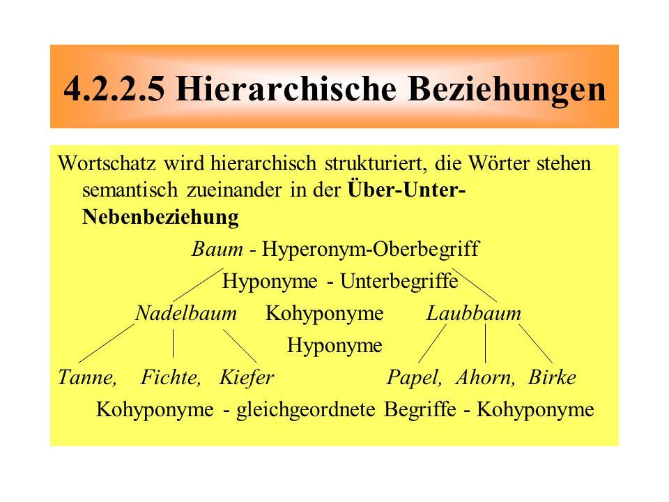 Wortschatz wird hierarchisch strukturiert, die Wörter stehen semantisch zueinander in der Über-Unter- Nebenbeziehung Baum - Hyperonym-Oberbegriff Hypo